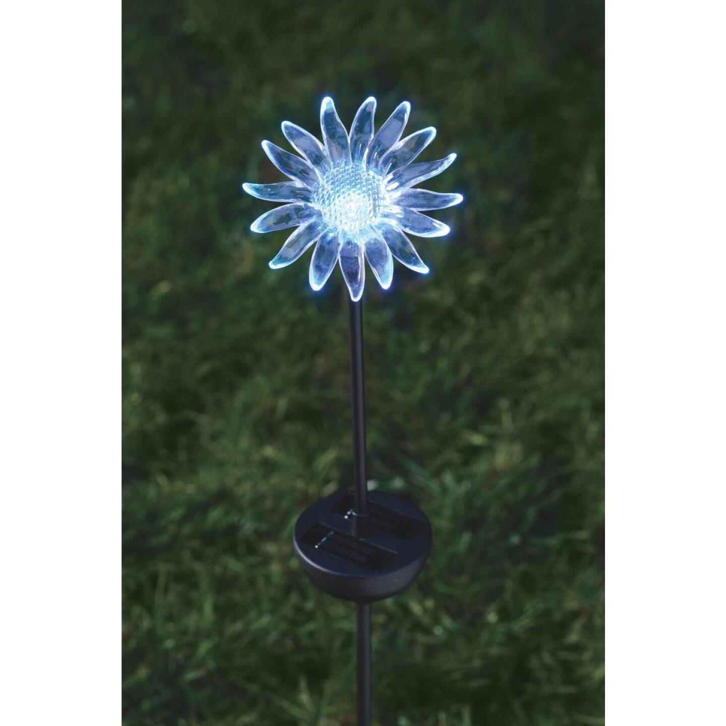 Moonrays Color Changing Plastic 32 In. H. Solar Stake Light Lawn Ornament Image 12