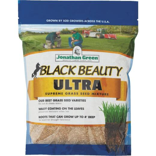 Jonathan Green Black Beauty Ultra 1 Lb. 200 Sq. Ft. Coverage Tall Fescue Grass Seed