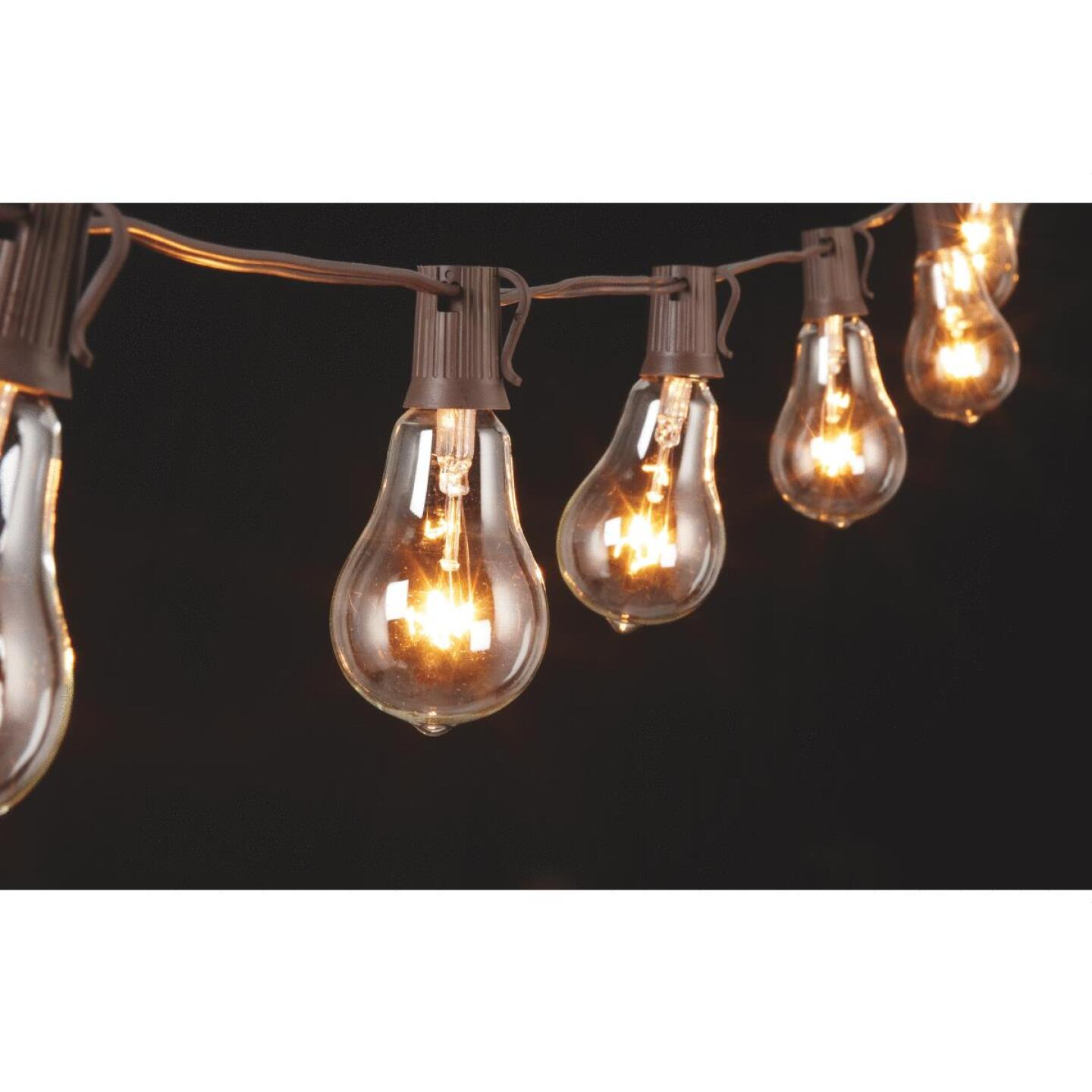 Gerson 10 Ft. 10-Light Clear Bulb String Lights Image 4