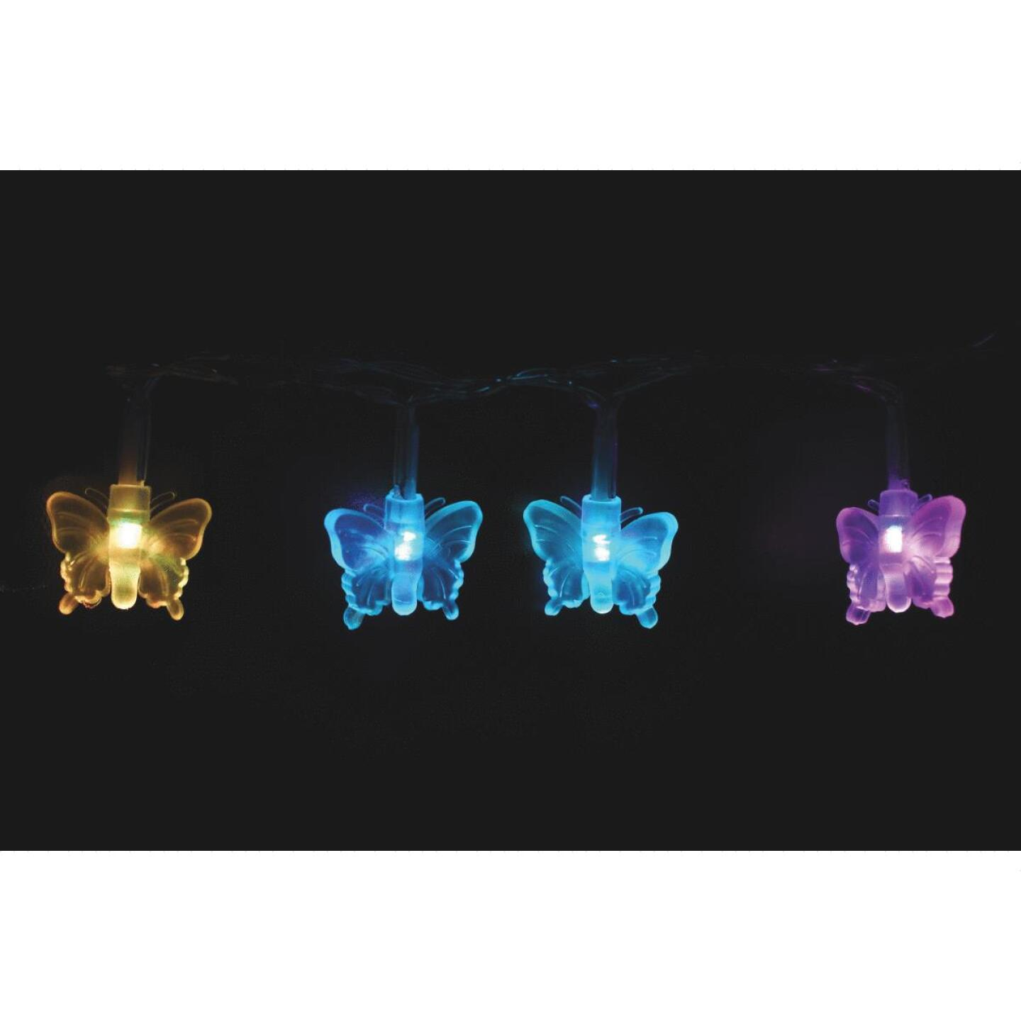 Alpine 5 Ft. 10-Light Clear Color-Changing Insect String Lights Image 5